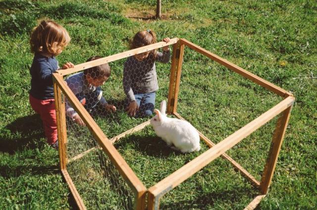 Conill i Nens Can Mas