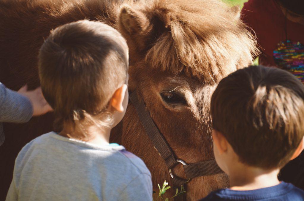 nens mirant poni