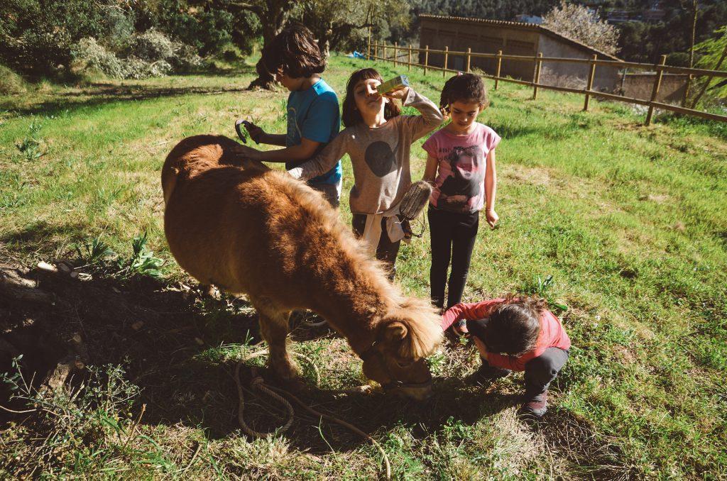 Nens escola jugant amb el poni